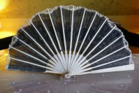 12 antique fan 1901