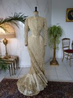 46 antique reception gown 1901