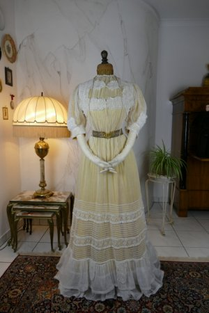 antique tea gown 1903