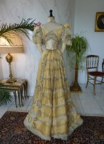 37 antique evening gown Duval Eagan 1889