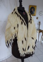 6 antique ermine cape