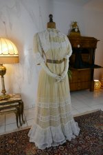 12 antique tea gown 1903