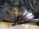 7 antique feather fan 1895