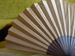 10 antique fan 1895