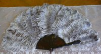2 antique feather fan 1900
