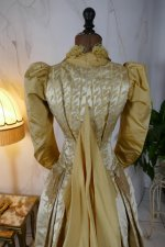 24 antique dress 1895
