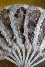 9 antique wedding fan 1890