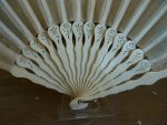 10 antique Fan 1890
