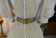 20 antique tea gown 1903