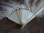 5 antique marabu feather fan 1890