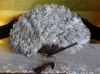 antique feather fan 1890