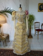 20a antique evening gown Duval Eagan 1889