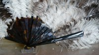 8 antique fan 1900
