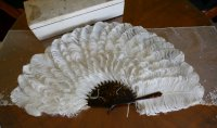 8 antique Duvelleroy feather fan 1900