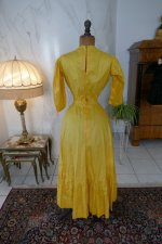 101 antique tea gown 1903