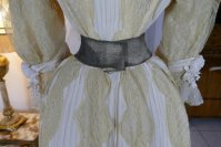 27 antique dress 1901