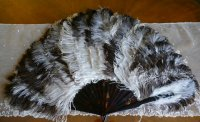2 antique fan 1900