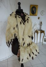 5 antique ermine cape