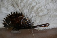 10 antique Duvelleroy feather fan 1900