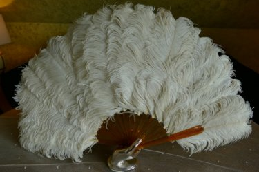 antique Ostrich feather fan 1900