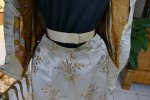43 antique dress Maison Lipmann 1896