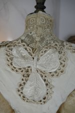 25 antique gown 1904