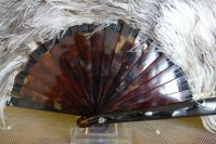 3 antique feather fan 1900