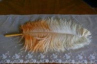 1 antique single feather fan 1910