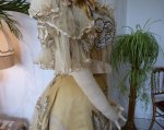 45 antique evening gown Duval Eagan 1889