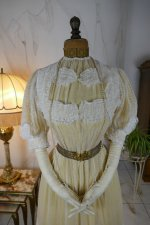 3 antique tea gown 1903