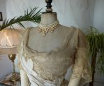 7 antique evening dress WORTH 1898