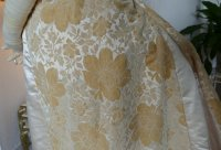 19 antique court dress 188