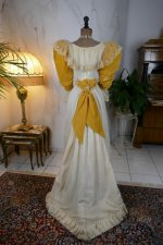 24 antique evening dress 1895