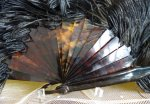 14 antique feather fan 1895