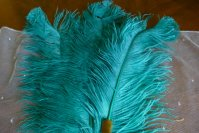 3 antique feather fan 1920