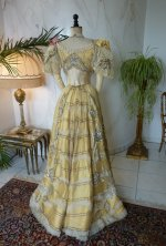 30 antique ball gown 1889