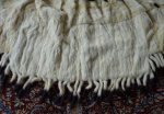 24 antique ermine cape
