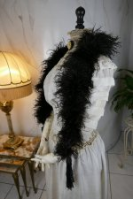 6 antique feather boa 1910