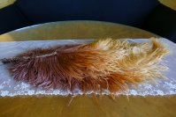 10 antique feather fan 1920