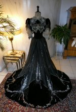 37 antique Gustave Beer gown 1906