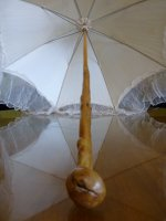 9 antique victorian parasol 1890