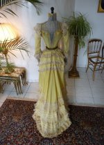 antique dress, antique gown, gown 1899, dress 1899, antique reception gown, antique promenade dress, antique walking dress