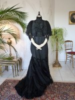 46 antique Worth evening dress 1898