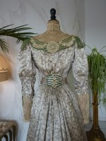 30 antique recpetion gown 1904