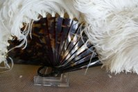 3 antique Duvelleroy feather fan 1900