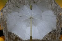 3 antique carriage umbrella 1865