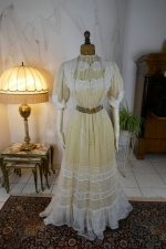 30 antique tea gown 1903